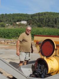 Récolte du Domaine Viticole Château Matheron