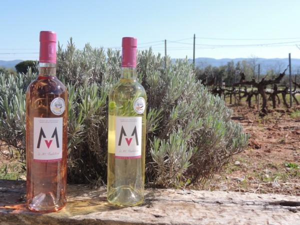 Bouteilles M'Traidtion Rosé et Blanc - Château Matheron